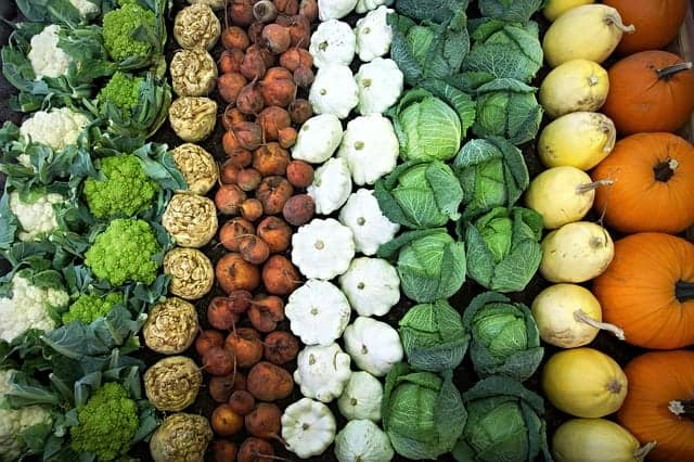 Gemüsestand Kraut, Kürbis, Blumenkohl, Brokkoli