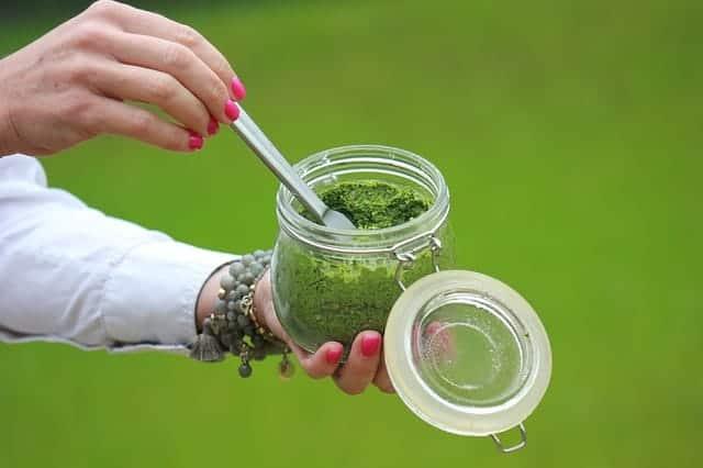 grüne Mousse
